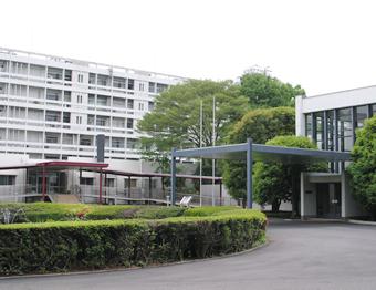 研究 所 は 理化学 と TOYO RIKAGAKU